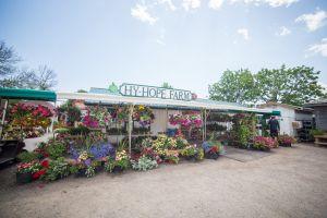 35 Farm Store