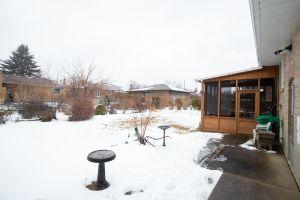 45 Backyard