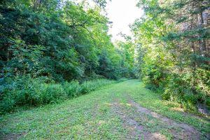 76 Trail