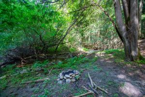 82 Trail
