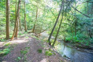 85 Trail